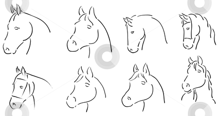 Horses stock photo, Horse heads by J?