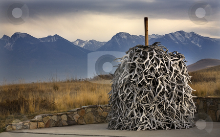 Elk Horns Pile National Bison Range Charlo Montana stock photo, Elk Horns Pile Snow Mountains National Bison Range Charlo Montana  Every year elk shed their horns, which have been piled up. by William Perry