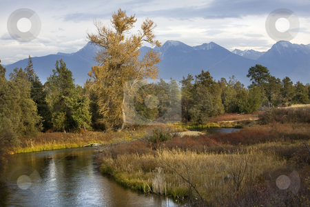 River Snow Mountains Fall Colors National Bison Range Charlo Mon stock photo, River Snow Mountains Fall Colors National Bison Range Charlo Montana by William Perry