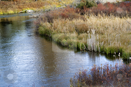 River Reflections Grass Fall Colors National Bison Range Charlo  stock photo, River Reflections Grass Fall Colors National Bison Range Charlo Montana by William Perry