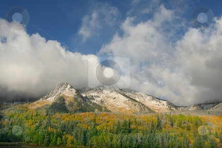 Sall Snow Storm # stock photo, Fall snow storm in the rocky mountains by Mark Smith