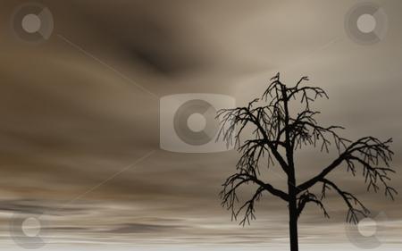 Tree stock photo, Dark sky and lonely tree by J?