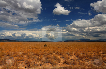 Desert Skys stock photo, Your Gallery Manager
