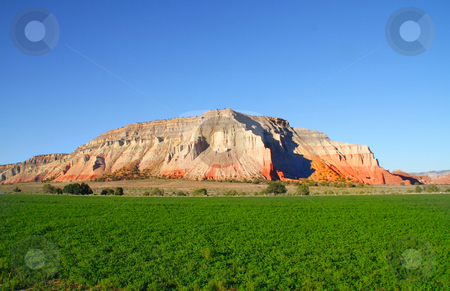Redrock Farm 2 stock photo, View of a hay Field with red rock mountain in the background by Mark Smith