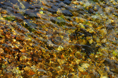 Creek Bed stock photo,  by W. Paul Thomas