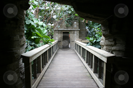 Bridge in the Jungle stock photo, A bridge in a zoo that brings you through an attraction. by Brandon Seidel