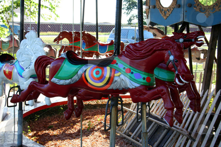 Carousel Horse stock photo, A newly painted carousel horse. by Brandon Seidel