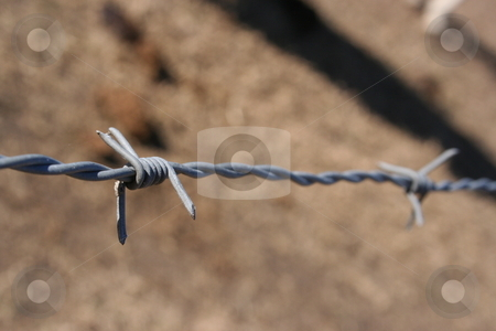 Barbed Wire stock photo, A strand of barbed wire between two fence posts.  Wire is fairly new with spider webs on it. by Brandon Seidel