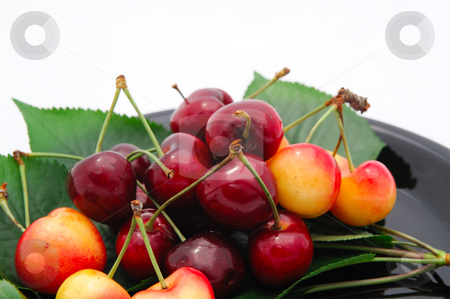 Rainier And Bing Cherries stock photo, Summer cherries on a black saucer with a light background by Lynn Bendickson