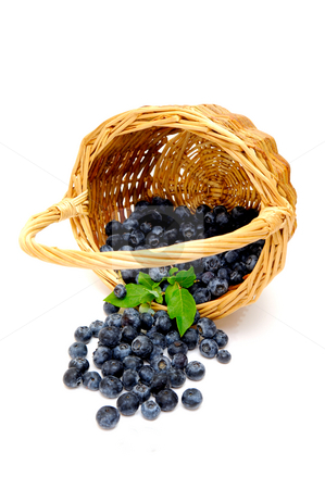 Spilled Blueberries stock photo, A wicker basket on its side with freshly picked berries spilling out on to a light colored background by Lynn Bendickson