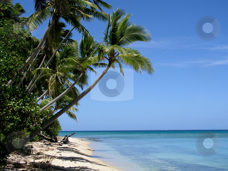 Tropical Beach stock photo,  by Ryan Dandy