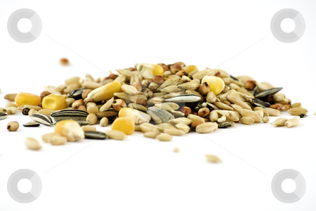 Grains stock photo, Varaiety of grains, including corn and sunflower seeds, isolated on white by Arek Rainczuk