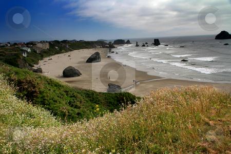 Bandon Beach Oregon Sea Stacks, Fair Skies, Ocean stock photo, Bandon Beach, Oregon, Sea Stacks, Fair Skies, Ocean, Wildflowers by William Perry