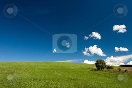 Summer abstract landscape stock photo, Summer abstract landscape with small white clouds and tree by Wiktor Bubniak