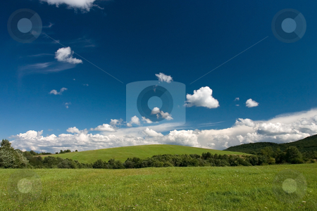 Summer cloudscape and green meadows stock photo, Summer  landscape with cumulus and green meadows by Wiktor Bubniak