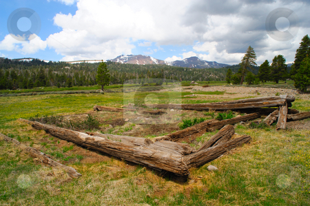 Log Cabin Remains stock photo, The remaing ruins on an old log cabin in a meadow in the California Sierra Nevada mountains by Lynn Bendickson