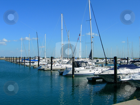 Sailboats in Chicago harbor stock photo, Sailboats aligned in Chicago harbor close to Navy Pier by Daniela Mangiuca
