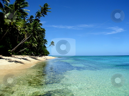 Fiji Beach stock photo,  by Ryan Dandy