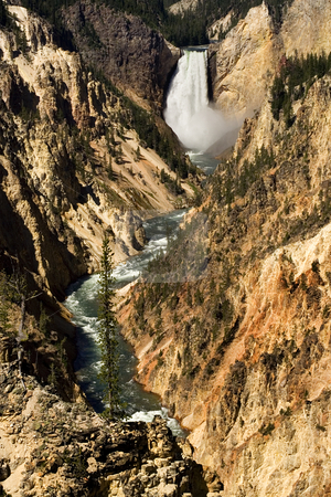 Yellowstone Falls and Canyon Yellowstone National Park stock photo, Yellowstone Falls and Canyon, Yellowstone National Park, Wyoming by William Perry