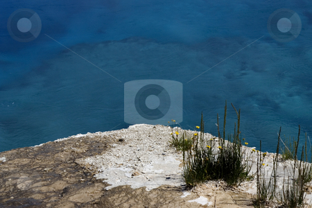 Sapphire Pool, Yellowstone National Park stock photo, Sapphire Pool, Very Hot Spring, with yellow flowers, Yellowstone National Park, Wyoming by William Perry