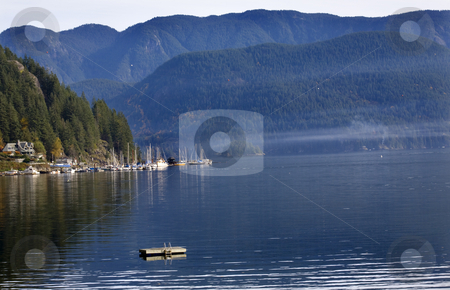 Raft Sailboats Reflections Deep Cove Harbor Vancouver BC Canada stock photo, Raft Sailboats Reflections Overview Deep Cover Harbor Vancouver British Columbia Canada by William Perry