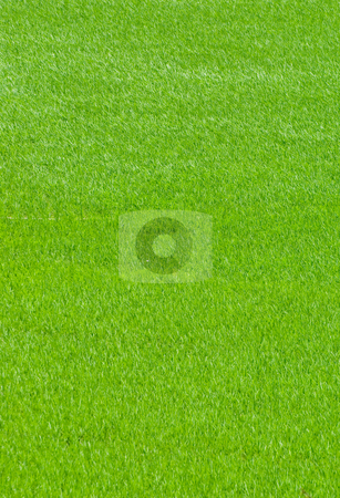 Green field, Aisa