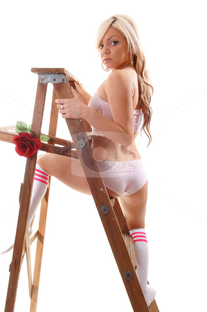 Girl on stepladder. stock photo, Pretty young girl in pink underwear and gray socks with long blond hair standing on the wooden stepladder, holding an red rose in her mouth. by Horst Petzold
