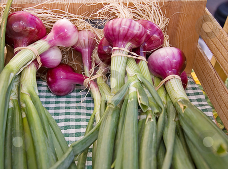 Bunches of Red Onions stock photo, Bunches of red onions with the stems in tack are bundled with rubber bands in a wooden box. by Valerie Garner