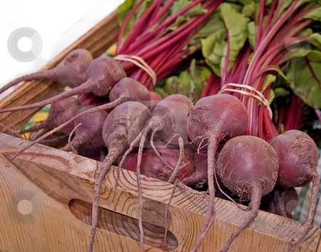 Bundles of Beets in Box stock photo, Bundles of beets are still with their tops and wrapped in bunches with rubber bands and placed in a wooden box. by Valerie Garner
