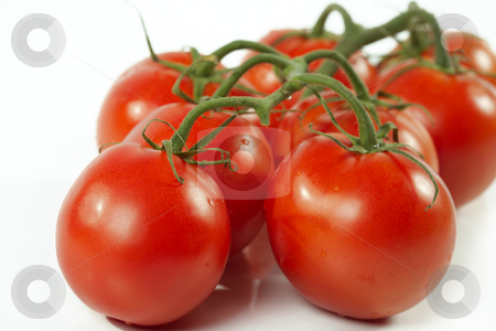 Tomato stock photo, Cluster of tomatoes on a white background by Sergey Goruppa
