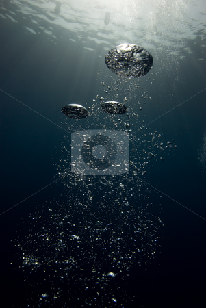 Bubbles in the blue stock photo, Bubbles in the ocean. by Mark Doherty