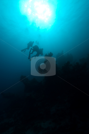 Silhouette of divers over a coral reef stock photo, Silhouette of divers over a coral reef by Mark Doherty