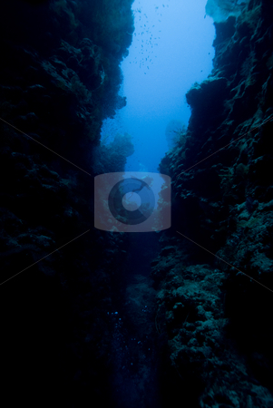 Diver inside Eel Garden Canyon stock photo, Diver inside Eel Garden Canyon, Ras Mohamed National Park, Red Sea, Egypt. by Mark Doherty