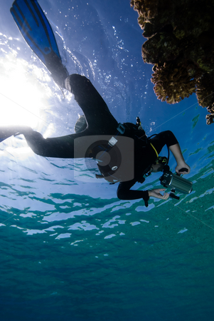 Underwater videographer from below stock photo, Underwater videographer from below. Red Sea, Egypt by Mark Doherty