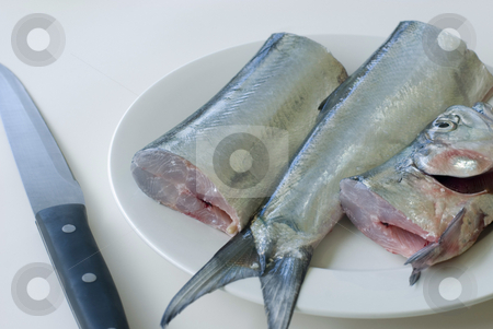 Fish filleting stock photo, Fresh ribbon fish and a filleting knife by Stephen Gibson