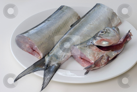 Plate of fish stock photo, A fresh ribbon fish on a plate, cut into three pieces ready for filleting by Stephen Gibson