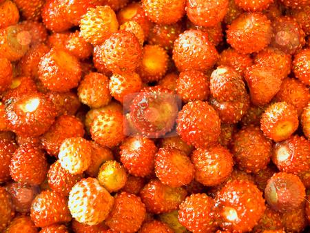Strawberry  stock photo, The photo of the red strawberry background by Sergej Razvodovskij