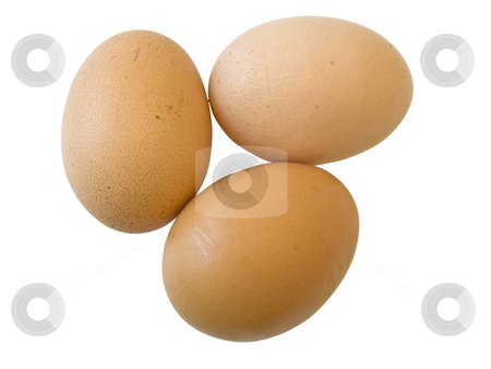 Eggs  stock photo, Three isolated eggs against the white background by Sergej Razvodovskij
