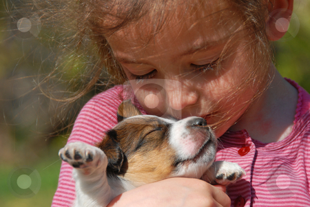 Little girl and puppy stock photo, Little girl and her very young puppy jack russel terrier by Bonzami Emmanuelle