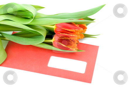 Flowers on envelope stock photo, Flowers on envelope , close-up isolated on white background by Vladyslav Danilin