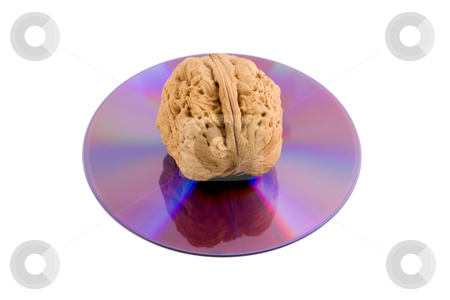 Walnut in disk cd stock photo, Walnut in disk cd close-up concepts isolated on white background by Vladyslav Danilin