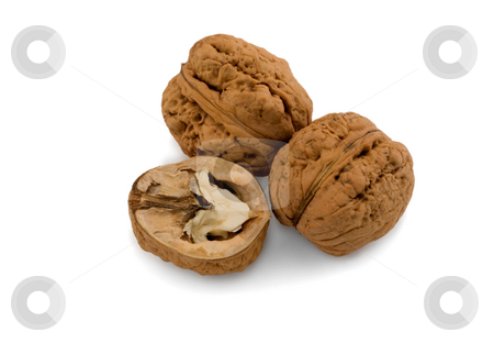Walnuts stock photo, A macro close-up of a walnuts ,isolated on white background. by Vladyslav Danilin