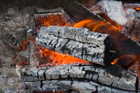 Campfire stock photo, Campfire background by Vladyslav Danilin