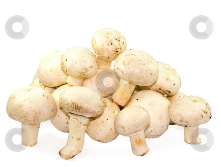 Mushrooms stock photo, Mushrooms isolated on white background by Vladyslav Danilin