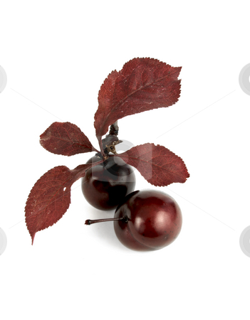 Two red Cherries stock photo, Two red cherries on a white background by John Teeter