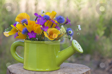 Bunch of wild flowers stock photo, Bunch of wild flowers in the  watering pot by Valery Kraynov