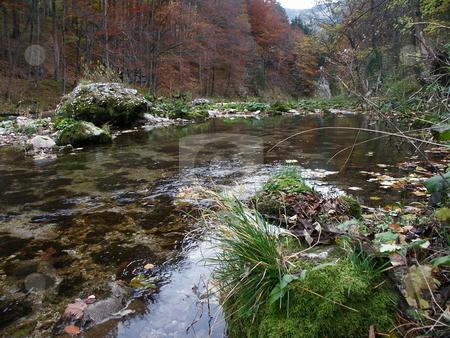 Landscape stock photo, Schwarza im H???llental mit Herbstwald / Schwarza in the autumn woods with H???llental by Thomas K?