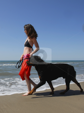 Woman and rottweiler on the beach stock photo, Woman and big purebred rottweiler on the beach by Bonzami Emmanuelle