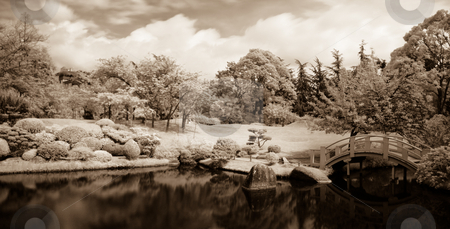 Japanese garden stock photo, Infrared panoramic  landscape of a japanese garden with a lake and bridge sepia toned by Laurent Dambies
