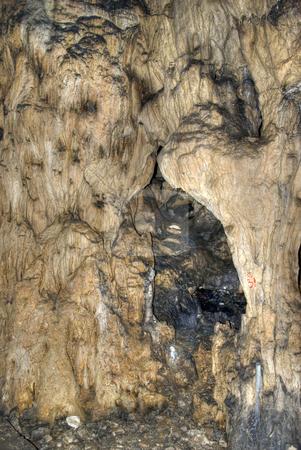 Cave stock photo, Stalagmite texture in Magura cave Bulgaria by Desislava Dimitrova
